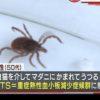 「マダニ感染症」で女性死亡-猫に噛まれて感染?!