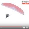 モーターパラグライダーが墜落-神奈川・寒川-68歳男性が死亡