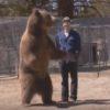 秋田新幹線がクマと衝突!-乗客は無事か?熊は?